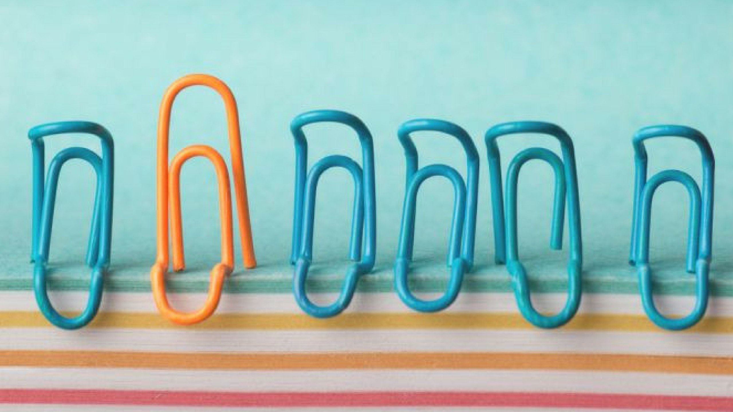 paperclips (1)